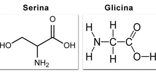 serina-glicina